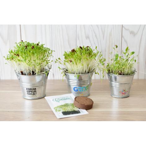 Kit de plantation publicitaire avec pot en zinc