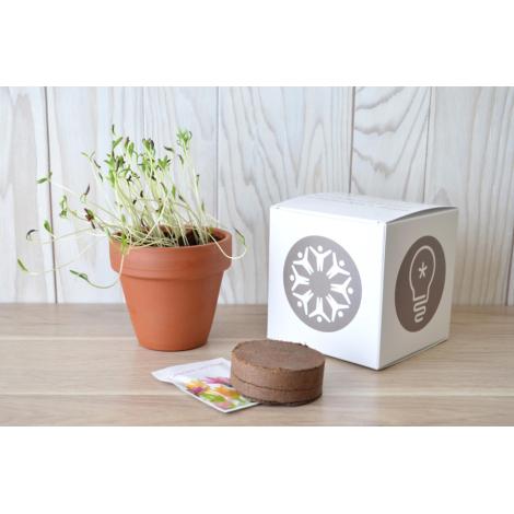 Cube de plantation en terre cuite publicitaire 7 ou 10 cm