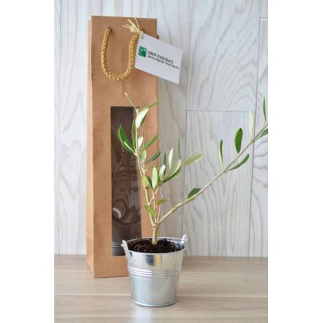 Plant d'arbre dans un sac kraft publicitaire