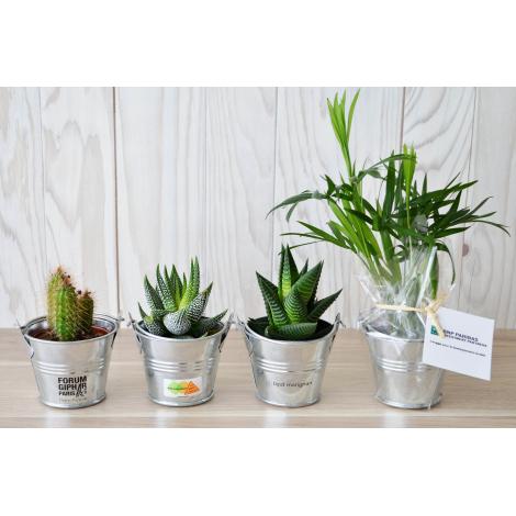 Mini plante dépolluante en pot zinc publicitaire