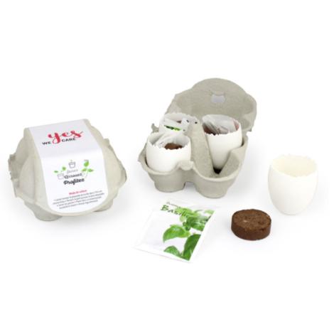 Kit de plantation promotionnel -  boite 4 oeufs à graines